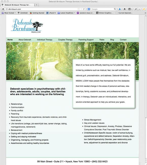 dbirnbaum.com home page design