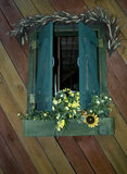 Window with shutters, flowers and diagonal siding
