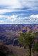 The Grand Canyon and Colorado River