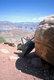 Wheelbarrow and Rock