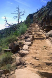 A stairway ascends the Grand Canyon via the South Kaibab Trail
